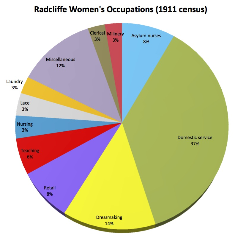 Women's occupations pie chart
