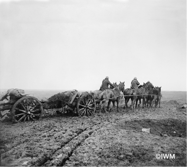 Team of horses pulling howitzer